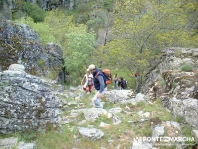 Cascadas del Purgatorio - rutas senderismo madrid; rutas senderismo la pedriza; rutas a pie madrid